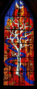 3 Winner -Tree of Life Window, Coonabarabran, NSW by Christopher John
